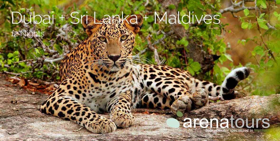 Viaje combinado Dubái + Sri Lanka + Maldivas, 12 noches